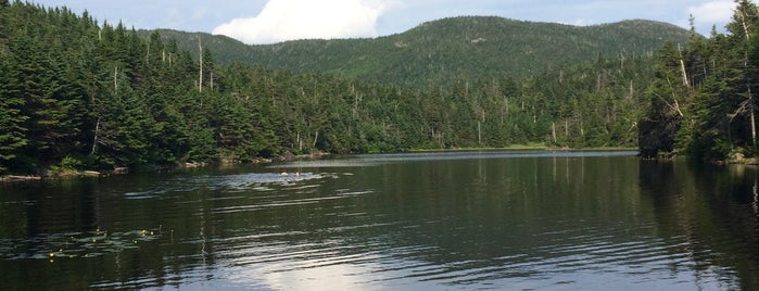 Sterling pond is one of Vermont.
