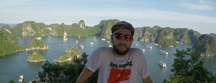 Halong Bay Cruises is one of Vietman.