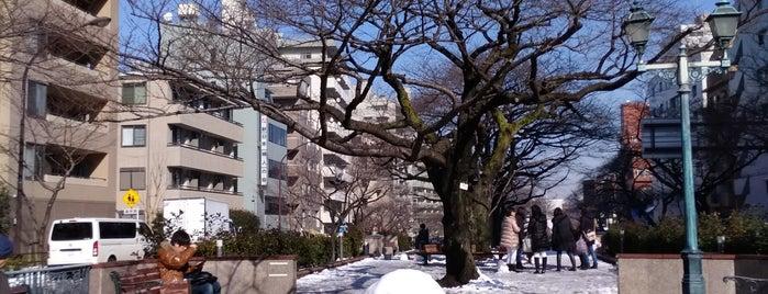 播磨坂 is one of 🌸桜が綺麗な坂.