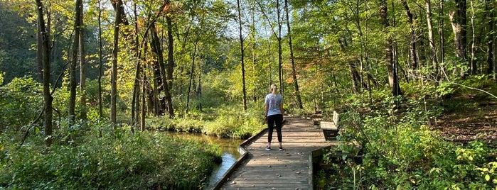 Oak Openings Preserve Metropark is one of Lugares favoritos de Emilio.