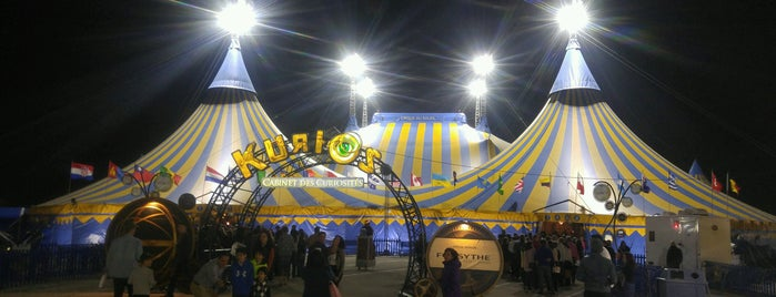 Cirque Du Soleil KURIOS is one of Tempat yang Disukai Andrii.