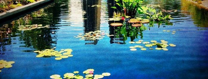 Denver Botanic Gardens is one of Things to Do in Denver.