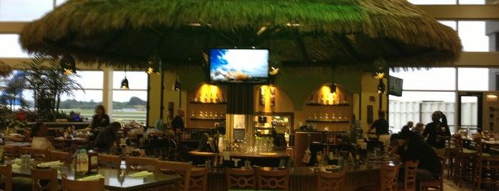 Green Iguana Bar & Grill is one of S : понравившиеся места.