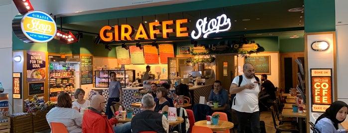 Giraffe Stop is one of สถานที่ที่ Maya ถูกใจ.