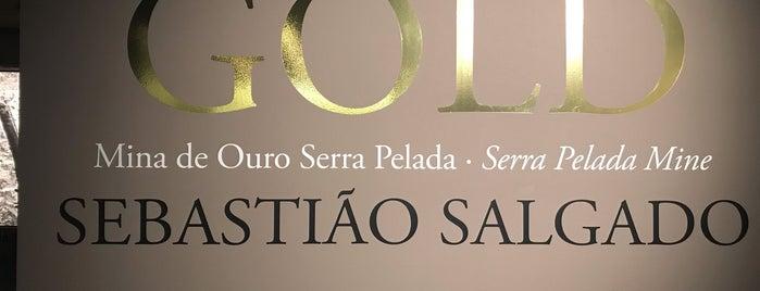 Sesc Avenida Paulista is one of Places to visit in São Paulo.