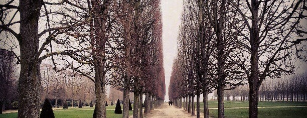 Parc du Château de Saint-Germain-en-Laye is one of ParisParisParis and Île-de-France.