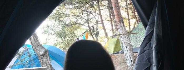 Dolmuş Camping is one of Kamp Alanları.