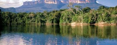Parque Nacional Canaima is one of Sitios Internacionales.