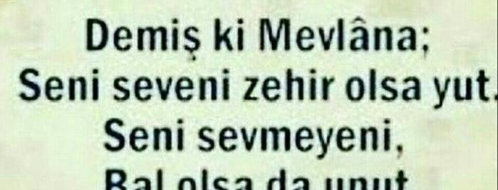 Elif İşitme Merkezi is one of Selim.