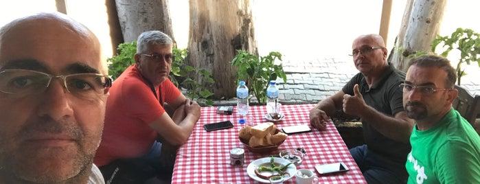Tlos Restaurant - The Bolu'lu Osman is one of Ayşe: сохраненные места.