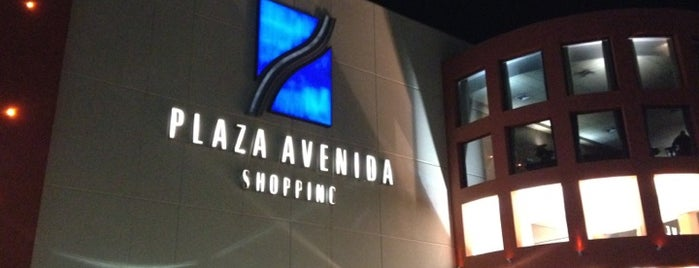Plaza Avenida Shopping is one of Lugares favoritos de Gustavo.