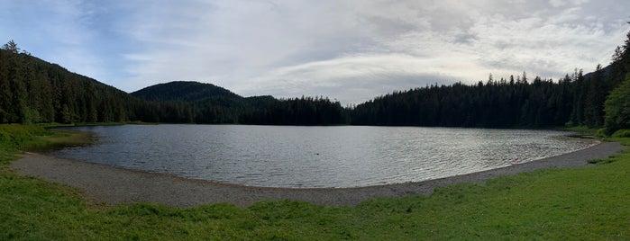Ward lake is one of Alaska cruising.