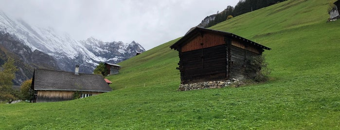 Gimmelwald is one of My Switzerland Trip'11.