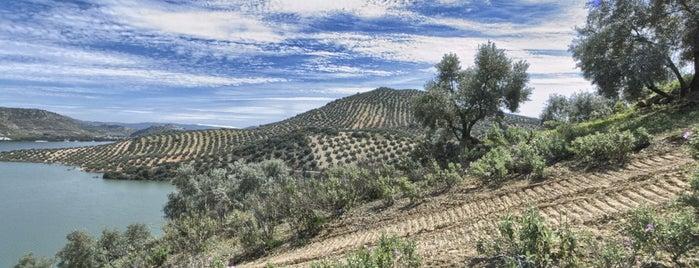 Mirador pantano de Iznajar is one of Que visitar en la provincia de cordoba.