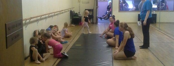 South Buffalo Dance Academy is one of Locais curtidos por Emily.