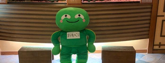 Akan Yuku no Sato Tsuruga is one of Lieux qui ont plu à Mike.