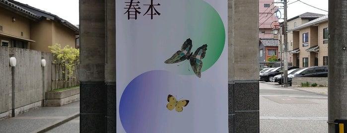 室生犀星記念館 is one of 金沢市文化施設共通観覧券で入れる.