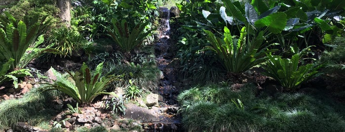 McBryde Garden is one of Kauai, HI.