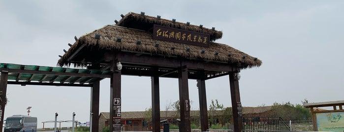 红海滩 is one of Top photography spots.