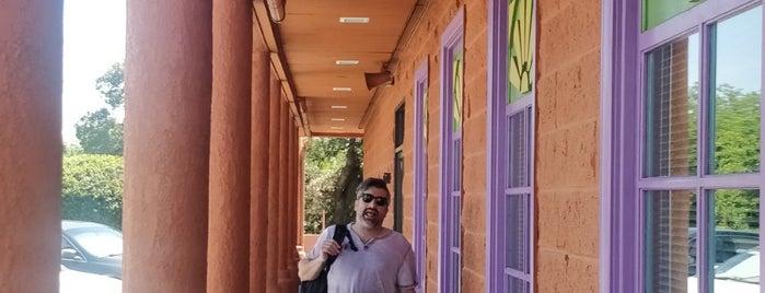 Guadalajara is one of Nicole : понравившиеся места.