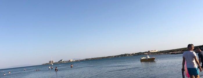 Konyalılar Sitesi Plajı is one of Posti che sono piaciuti a Gezgin.