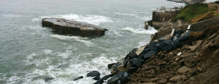 Sunset Cliffs Natural Park is one of Trips / San Diego.