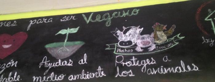 Vegan Ville San Rafael is one of vegan power.