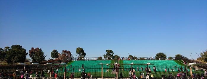 舎人公園 ソリゲレンデ is one of Masahiro : понравившиеся места.
