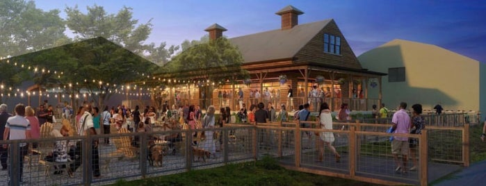 The 13 Best Beer Gardens In New Orleans