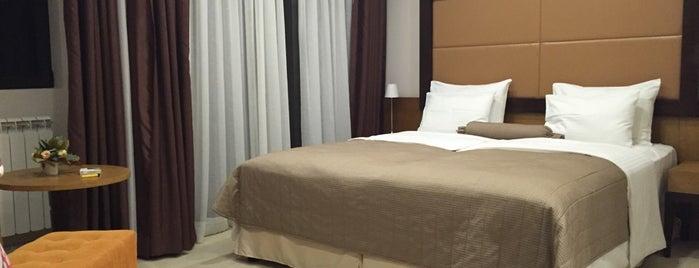 Hotel Mir **** is one of Zlatiborski okrug.