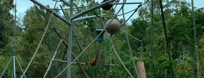 Orangutan and Siamang Exhibit is one of Angela'nın Beğendiği Mekanlar.