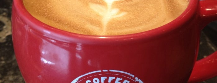 Rev Coffee is one of Your Next Coffee Fix.