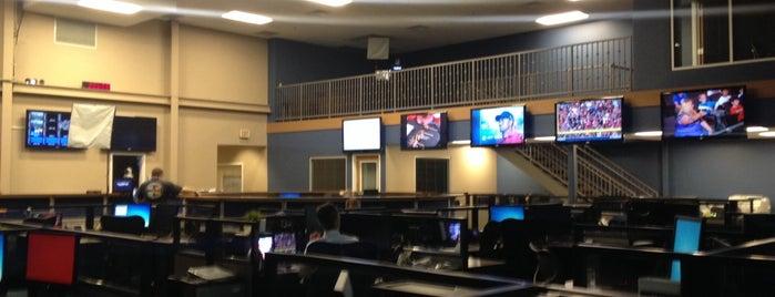 CBS 5 news is one of Orte, die Doug gefallen.