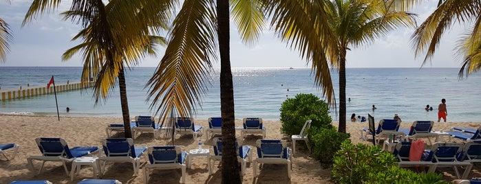Beach Allegro Cozumel is one of Lugares favoritos de Fanny.