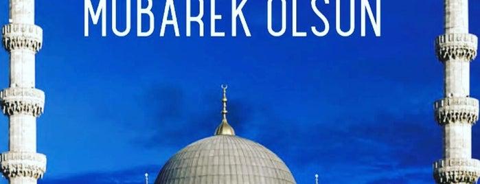 Yıldırım Home is one of Lugares favoritos de ♣$Bayazıt$♣.