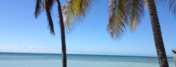 Bahia Salinas Beach Resort & Spa Cabo Rojo is one of Favorite Spots to visit.