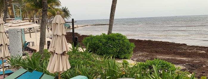 Panama Jack Resorts is one of สถานที่ที่ Miguel ถูกใจ.