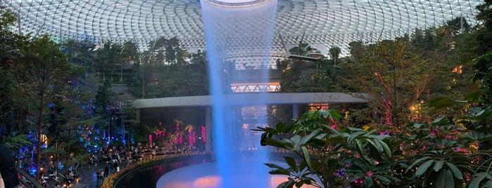 Jewel Changi Airport is one of Locais curtidos por MAC.