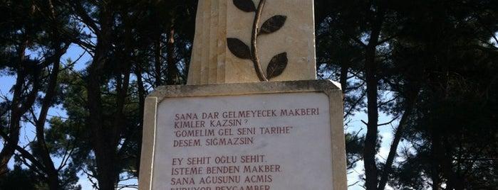 Sargıyeri Şehitliği is one of Lieux qui ont plu à 🌜🌟hakan🌟🌛.