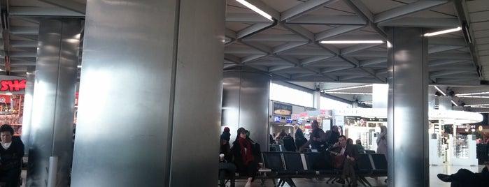 Flughafen Istanbul-Atatürk (ISL) is one of Orte, die Özlem gefallen.