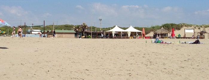 Free Beach (Secondo Cancello) is one of Italy 2.