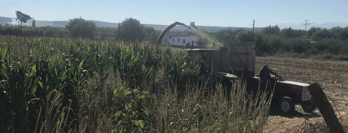 Dombaylı Köyü is one of Lieux qui ont plu à Hasan.