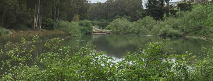 Pine Lake Park is one of SF to-do.