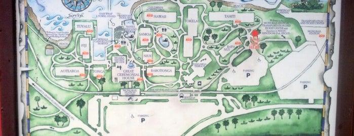 Disney's Polynesian Village Resort is one of Locais curtidos por Orlando Informer.