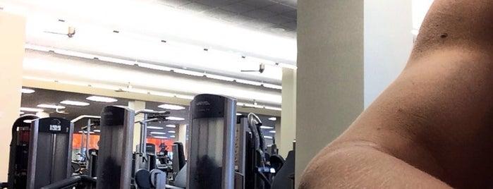 LA Fitness is one of Orte, die Bayana gefallen.