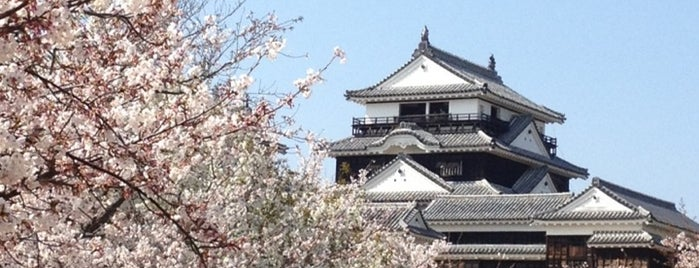 Matsuyama Castle is one of Japonya.
