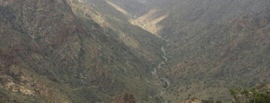 Alshafa is one of สถานที่ที่ Bandder ถูกใจ.