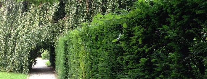 Alter Botanischer Garten is one of 5 días en Zurich / 5 days in Zurich.