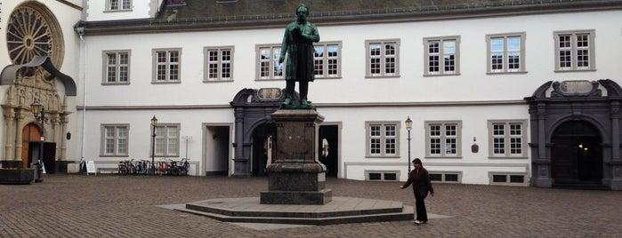 Johannes-Müller-Denkmal is one of Coblenza.