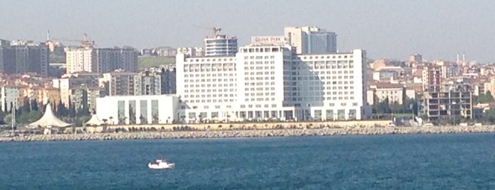 The Green Park Pendik Hotel & Convention Center is one of Mehmet Koray : понравившиеся места.